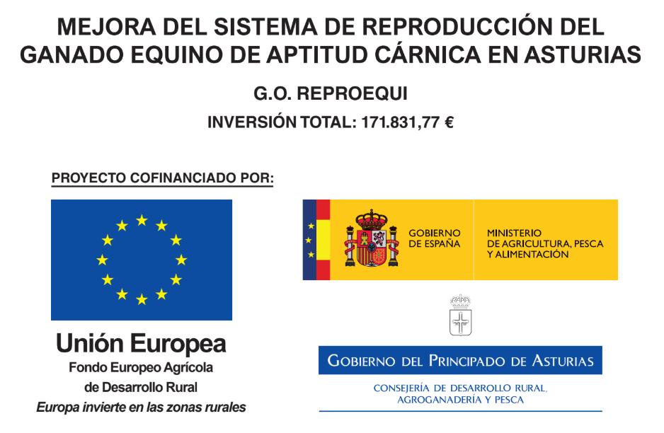 Proyecto_reproequino