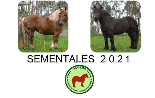 sementales_2021